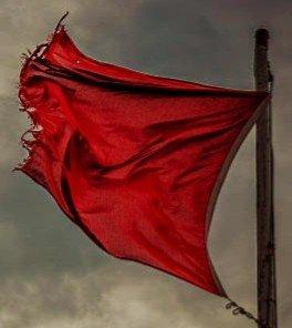 1914412038_redflag.jpg.f8c9cf5fdd3796fb574410f79841bf17.jpg.81fae09f2f6118b2d2699acef5a3150a.jpg